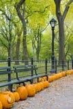 Autumnal Central Park Stock Photo