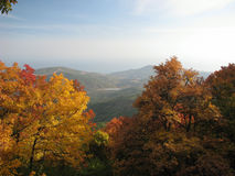 Autumnal Chigenitra.Crimea.Ukraine Royalty Free Stock Photo