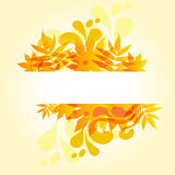 Autumnal colored leaves. Autumnal yellow leaves on white background Stock Photo