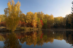 Autumnal colors. Landscape with lake in bright colors Royalty Free Stock Photo