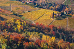 Autumnal colors of Italy. Stock Images
