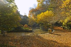 Autumnal colors in park with small pool Royalty Free Stock Photos