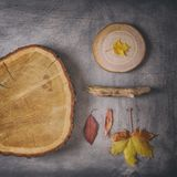 Creative Autumnal Composition on Scratchy Background stock photo
