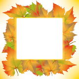 Autumnal concept Stock Photography