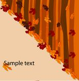 Autumnal concept background Stock Photos