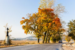 Autumnal countryside Royalty Free Stock Image