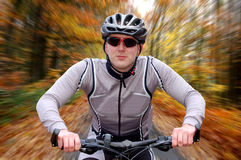 Autumnal cycling. Speeding cyclist in the autumn landscape Royalty Free Stock Photo