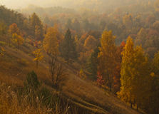 Autumnal day Royalty Free Stock Image