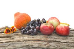 Autumnal decor wih fruits Stock Photos