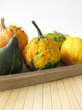 Autumnal decoration with ornamental gourds Royalty Free Stock Photos