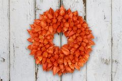 Autumnal Decoration Wreath with Physalis on grunge background. Autumnal decoration wreath with dried sepals of Physalis alkekengi on grunge backgroundte stock photo
