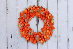 Autumnal Decoration Wreath with Physalis and Withywind on grunge background. Autumnal decoration wreath with dried sepals of Physalis alkekengi and fruits of stock photo