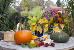 Autumnal decorations Stock Photo