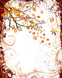 Autumnal design Stock Photo