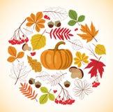 Autumnal design Stock Photography