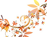 Autumnal design. Vector illustration of colorful autumnal leaves Stock Image