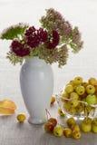 Autumnal dessert Stock Image