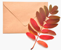 Autumnal envelope Stock Photo