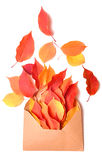 Autumnal envelope Royalty Free Stock Photos