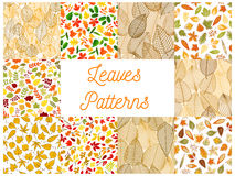 Autumnal fallen leaves seamless patterns set. Autumn fallen leaves seamless patterns set with autumnal foliage and branches of forest trees, acorn, rowanberry Stock Images