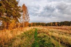 Autumnal field Stock Photo