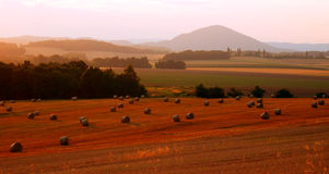 Autumnal fields with straw bales Royalty Free Stock Photos