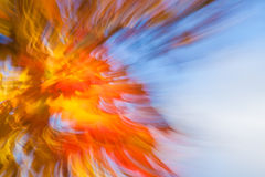 Autumnal fireworks Royalty Free Stock Photos