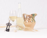 Autumnal flavors of wine Stock Photography