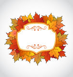 Autumnal floral card with colorful maple leaves Stock Photography