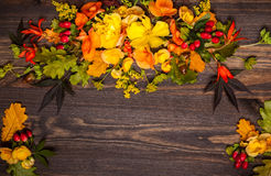 Autumnal flowers and berries Royalty Free Stock Photos