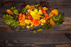 Autumnal flowers and berries Stock Photography