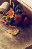 Autumnal flowers in box on wooden table. Postcard. Stock Image
