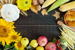 Autumnal food background. Crop of vegetables and fruit on wooden background royalty free stock photos