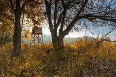 Autumnal forest and grassland with raised hide. At sunny morning Royalty Free Stock Photos