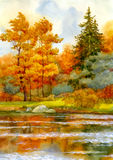 Autumnal forest on the lake royalty free stock image