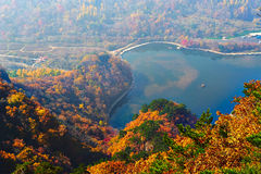 The autumnal forest and lake scenery Stock Photo