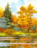 Autumnal forest on the lake Royalty Free Stock Photo