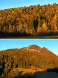 Autumnal Forest at Sunset - Trentino Italy Royalty Free Stock Photos