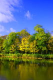 Autumnal forest un der blue sky Stock Photography