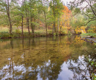 Autumnal forest with wild river Royalty Free Stock Photos
