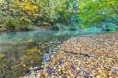 Autumnal forest with wild river Royalty Free Stock Photography