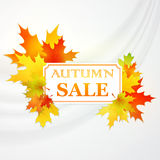 Autumnal frame with fallen leafs. . Vector. Illustration EPS 10 Royalty Free Stock Photo