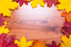 Autumnal frame with leaves Royalty Free Stock Photos