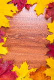 Autumnal frame with leaves Royalty Free Stock Photo