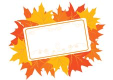 Autumnal frame with maple leaves stock illustration
