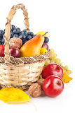Autumnal fruit in basket Royalty Free Stock Photo