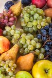 Autumnal fruit still life on rustic wooden table background.  Stock Photography
