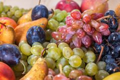 Autumnal fruit still life on rustic wooden table background.  Stock Photos