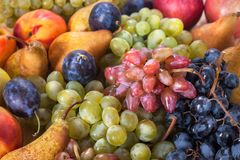 Autumnal fruit still life on rustic wooden table background.  Royalty Free Stock Photo