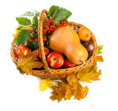 Autumnal fruit and vegetables Royalty Free Stock Photos